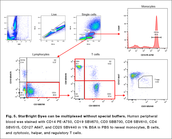 Fig. 5. Starbright Dyes can be multiplexes without special buffers.