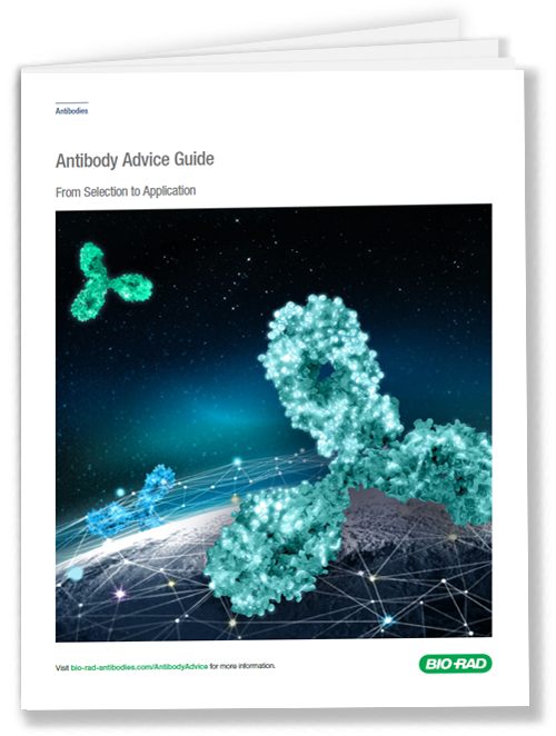 Get your Antibody Advice Guide